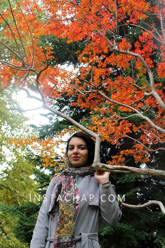رنگ های پاییزی